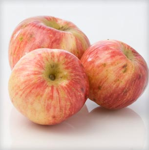 Tremlett's Bitter Apple